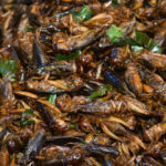 Should you Eat Crickets and Other Insects in Cambodia?