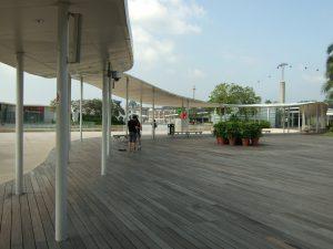 Vivo City Rooftop Swim