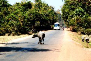Bus to Siem Reap
