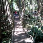 Jacob Ballas Garden: Botanic Jungle Play in Singapore